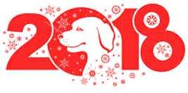 year-of-dog